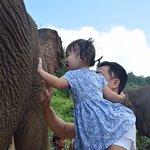 Fascinated children