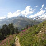 Amazing views along the trail walking down from Gornergrat