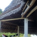 Photo of Casa Umoja