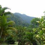 Photo de Omega Tours Eco Jungle Lodge