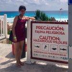 Foto di Playa Delfines