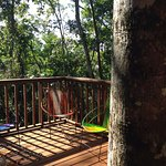 View from the Iguana Treehouse Suite private deck