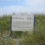 Jetties Beach Rules