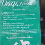 There are special rules for dogs here.