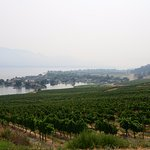 View from Quails' Gate winery, West Kelowna