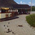 Barra de la playa/ Morffis: un genio.
