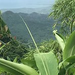 Photo de Wyndham Grand Rio Mar Puerto Rico Golf & Beach Resort