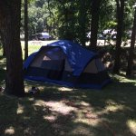 We put our tent under the trees.