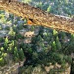 Photo de Walnut Canyon National Monument
