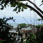 Photo of Cahuita National Park