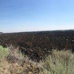 Foto di Lava Beds National Monument