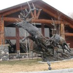 AmericInn Lodge & Suites Cody - Yellowstone Foto