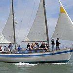 Sail boat tours