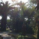 Photo de Pine Bay Holiday Resort