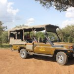 our game viewing land cruiser.