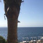 view from buffet restaurant terrace
