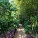 Path Entrance