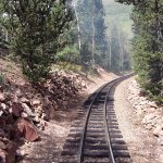 The Railroad in the forest