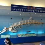 Photo de Kagoshima City Aquarium