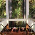 Hängende Gärten und Treppe zum Café