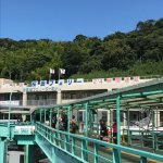 Photo of Sakura Jima Ferry