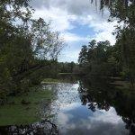 Photo de Lettuce Lake Regional Park