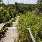 Duffins Trail