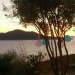 Camping Pod Maslinom照片