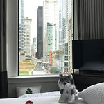 The Alise Chicago - A Staypineapple Hotel Photo