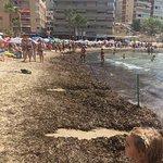 Photo of Cala Finestrat Beach