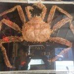 Tony's Crab Shack