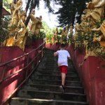 second time seeing him going up the stairs without complaining (after big buddha the day before)
