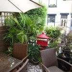 Tasteful plants and other decorative items