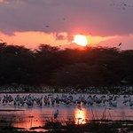Sunrise in Lake Manyara
