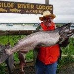 Nice King Salmon