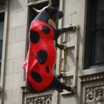 Close-up of Ladybug Cow on Hotel's Facade