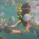 Photo of Snorkel Adventure CR