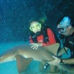 Scuba Diving with Nurse Shark