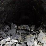 część węgla