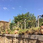 Agriturismo Villa Nicetta Foto