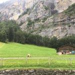 Photo de Camping Jungfrau