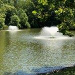 pond fountain