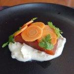 starter (salmon)