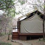 Photo de Thakadu River Camp