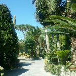 Park Hotel Terme Mediterraneo Foto