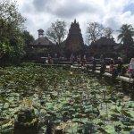 Photo of Cafe Lotus