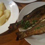 Sea bass with boiled potatoes
