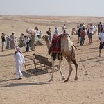 Avoid the camel ride sellers
