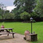 tranquil garden setting