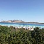 Photo de La Pelosa Beach